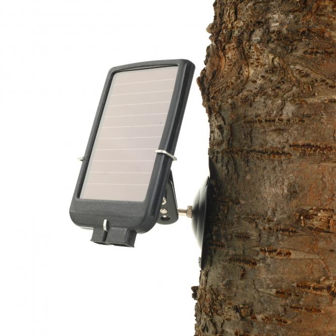 wildkamera solar panel mit lp akku. Black Bedroom Furniture Sets. Home Design Ideas