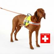 Hundegeschirr - Nachsuche - Typ 1 - Swiss Made