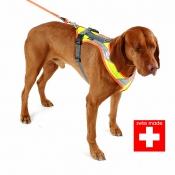 Hundegeschirr - Nachsuche Profi - Typ 2 - Swiss Made