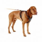 Niggeloh - Hundeführgeschirr - Follow - Braun