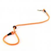 Beileine - Nylon mit Halsung - Signal-Orange