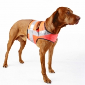Jagd - Sicherheits-Hundeweste - Orange