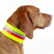 Hunde-Signal-Halsung - Klettband - 7cm
