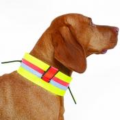Hunde-Signal-Halsung - Fahnen - Dehnband - 7cm