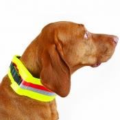 Hunde-Signal-Halsung - Dehnband / GPS - 7cm