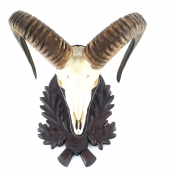 Gehörnbrett - Muffel - Linde - Typ 3