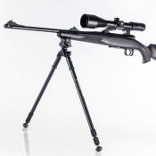 Vanguard - Zweibein - Equalizer 3QS
