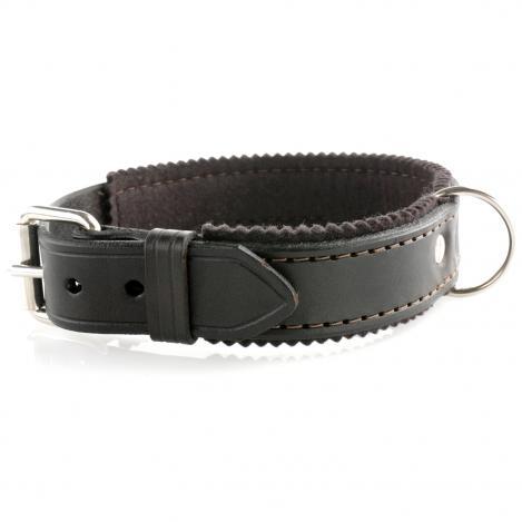 Hundehalsband - Leder/Filz