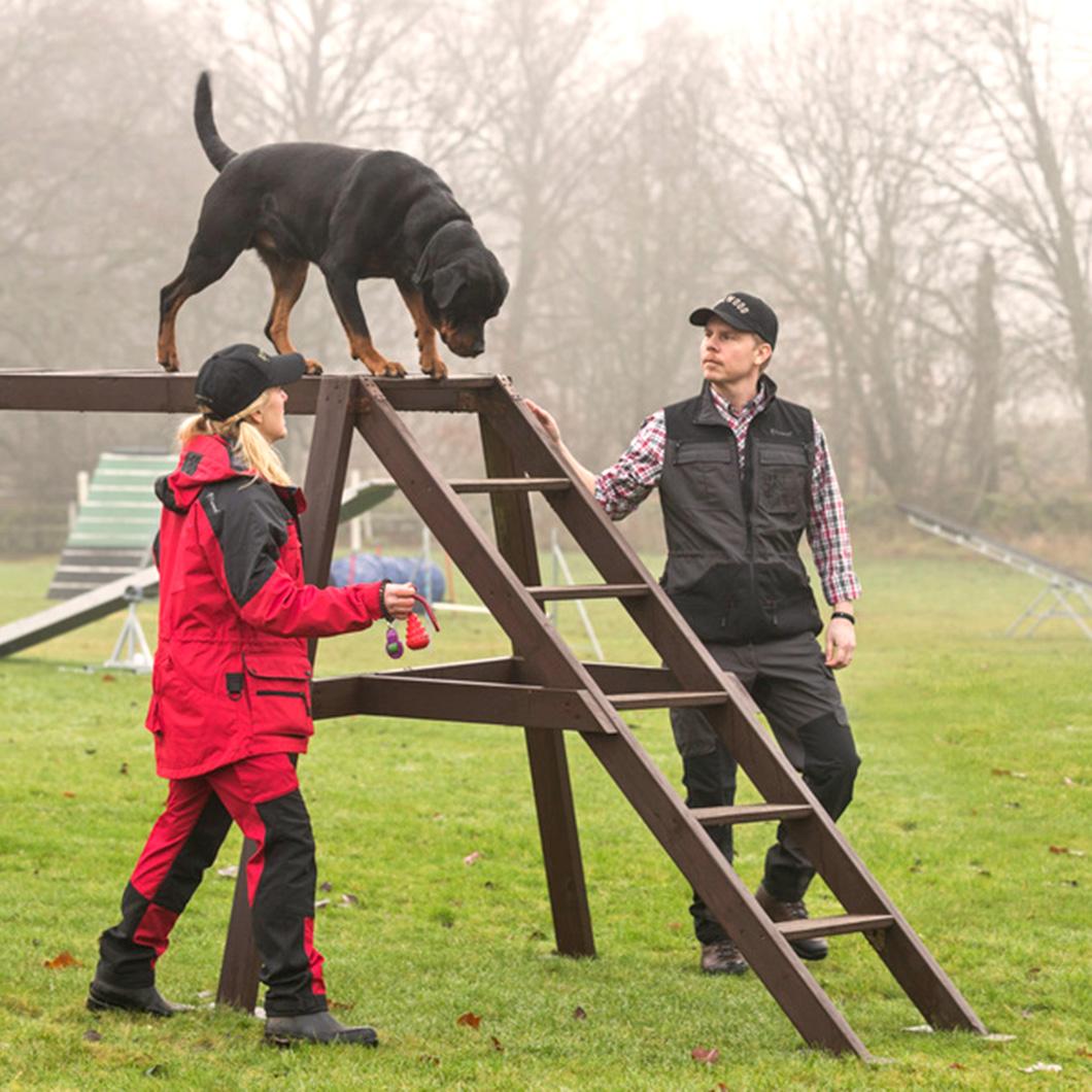 bae45d0d6a PINEWOOD® Dog Sports Extreme Herren Hose | JagdFIEBER.com